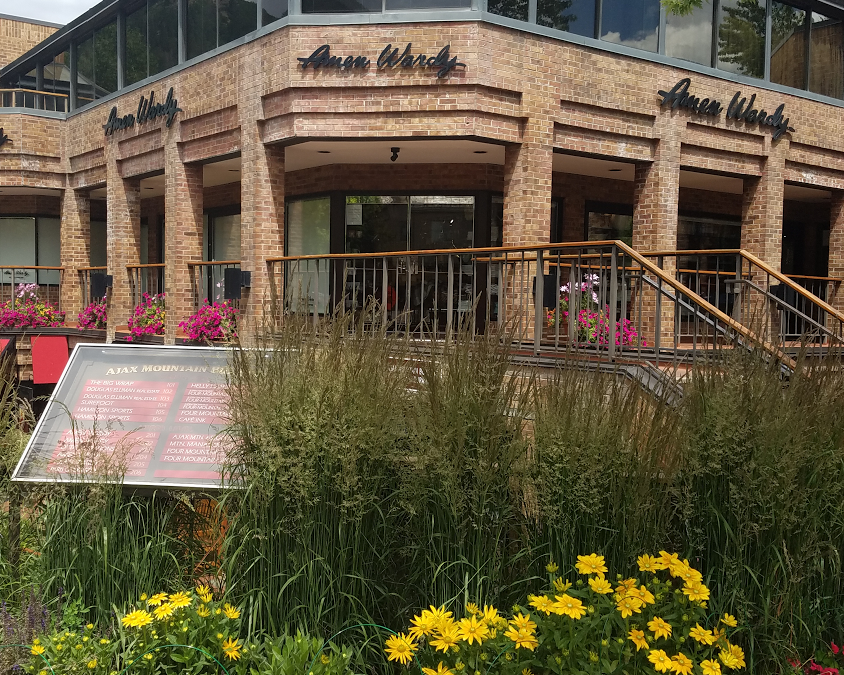 Amen Wardy downtown aspen flowers at amen wardy | search aspen real estate